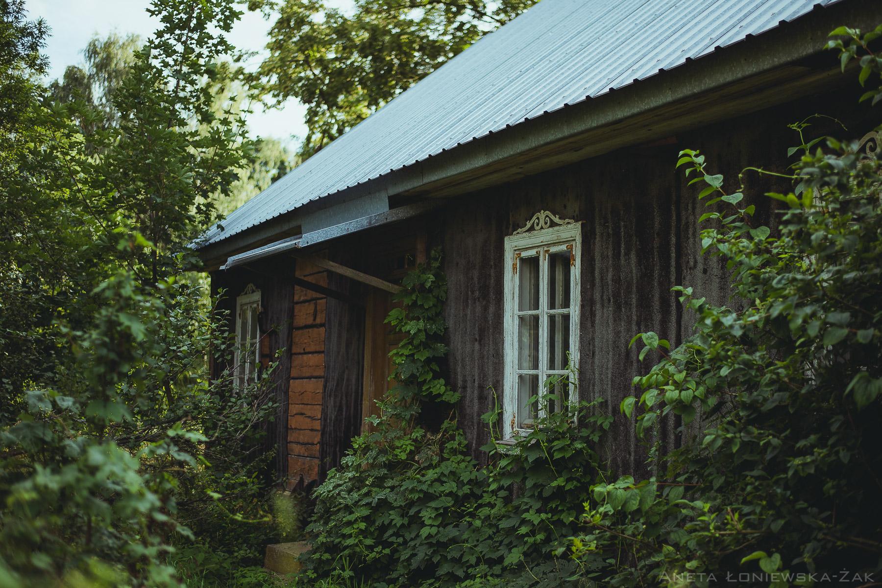 fotografia przyrodnicza, puszcza knyszyńska, podlasie, drewniany dom