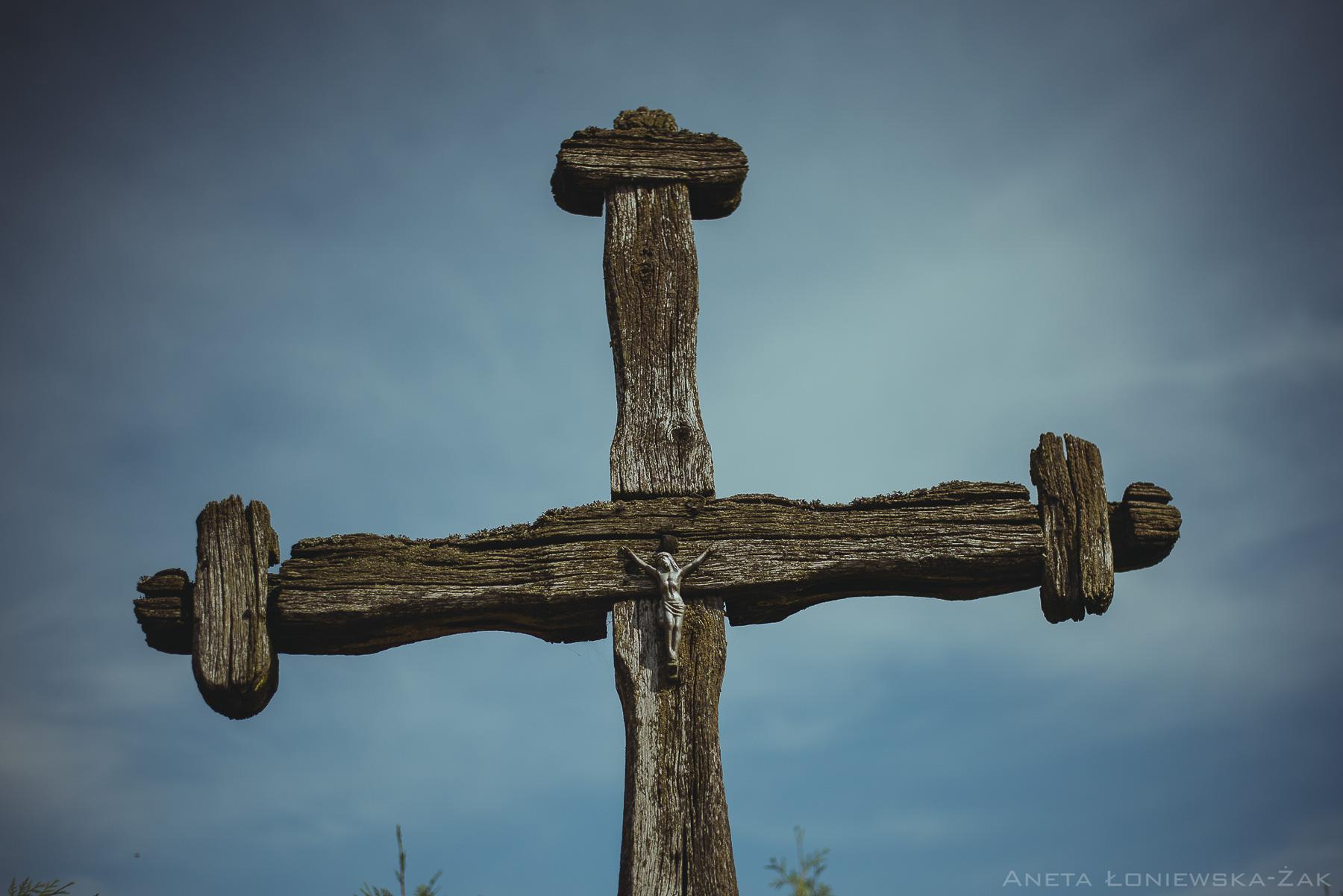 fotografia przyrodnicza, puszcza knyszyńska, podlasie, kopisk, stary krzyż