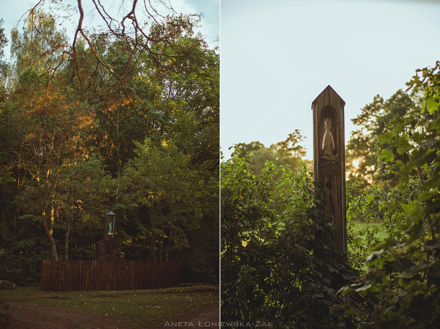 fotografia przyrodnicza, puszcza knyszyńska, podlasie, drewniana kapliczka