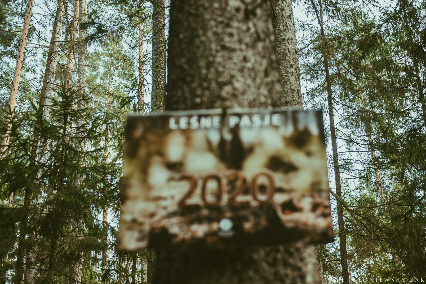 Aneta Łoniewska-Żak, kalendarz lasy państwowe, rdlp Białystok, projekt kalendarza